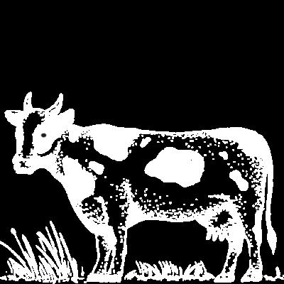 civico21-qualita-carne2-senigallia